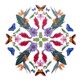 Floral Ballet