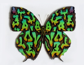Graffiti Butterfly