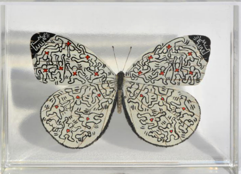 Haring Butterfly