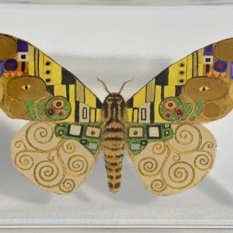 Klimt Butterfly
