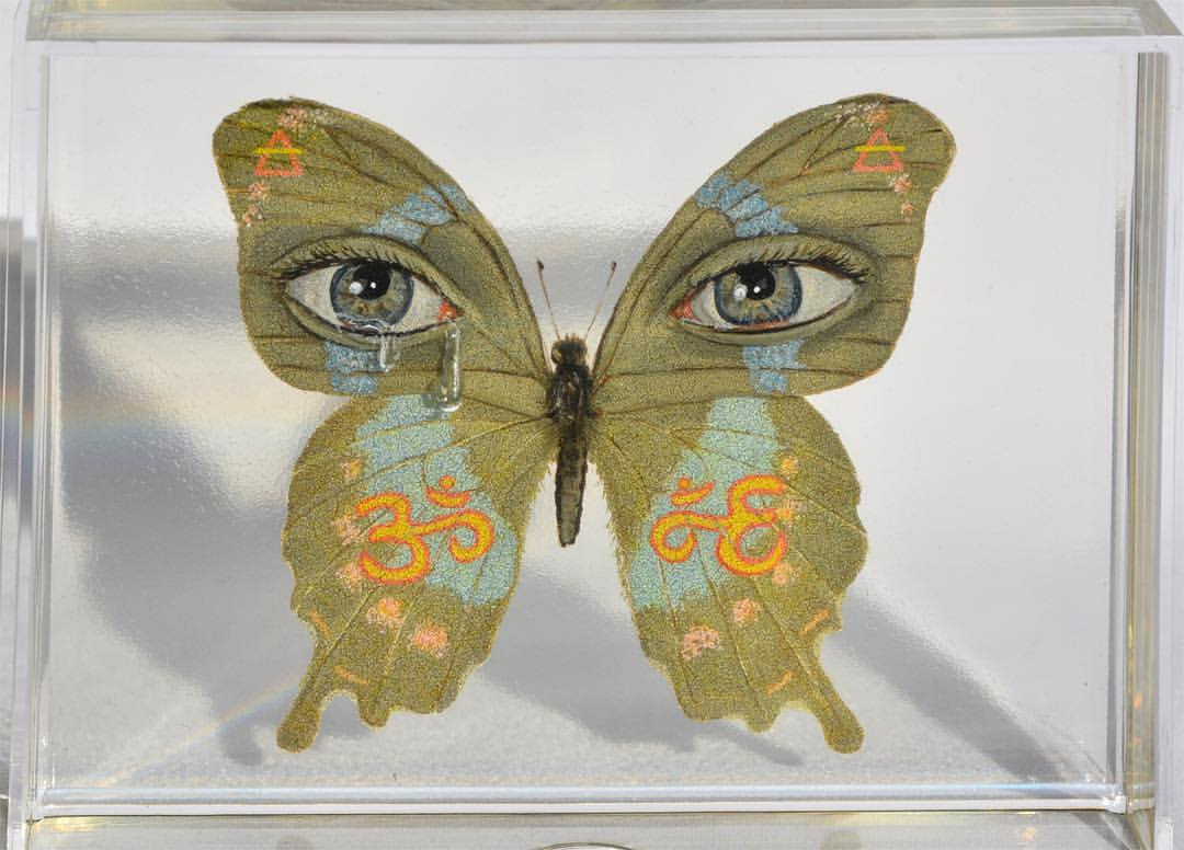 Pop Surrealist Butterfly